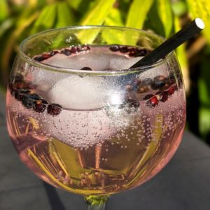 Poppyland's Raspberry and Vanilla Gin